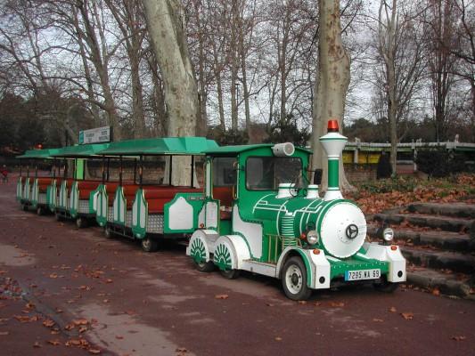 Photo du Lézard du Parc de la Tête d'Or