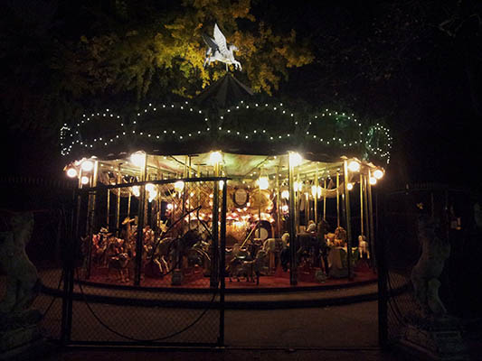 Photo du grand carrousel de nuit